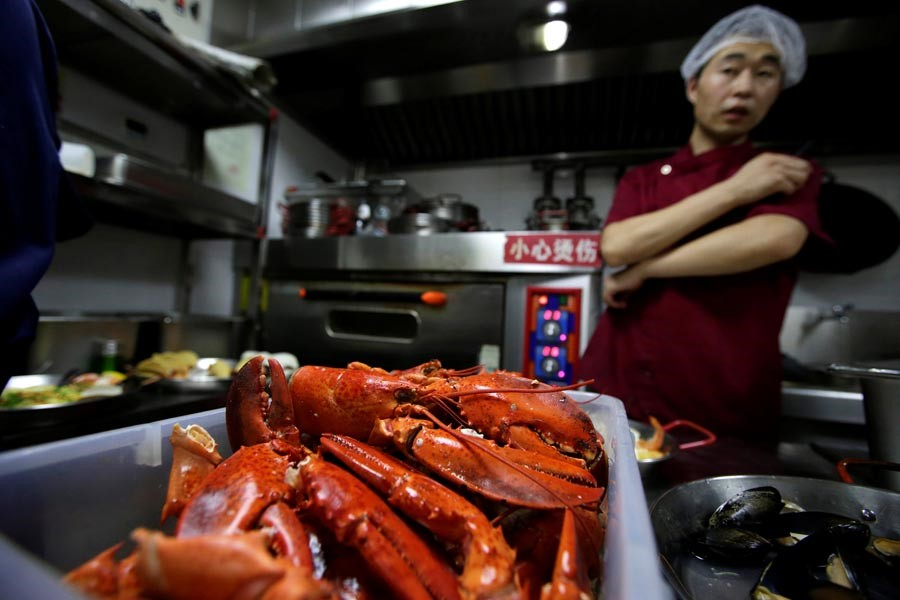 Tariffs instant pain for us lobster firm