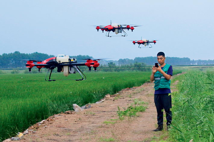 July 23, 2018: A drone operator works in a paddy field in Shuangyashan City, Heilongjiang Province.  VCG